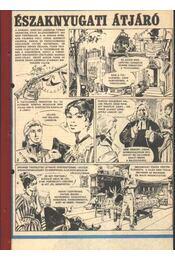 Északnyugati átjáró 1985. (18-46. szám 29. rész) - Régikönyvek