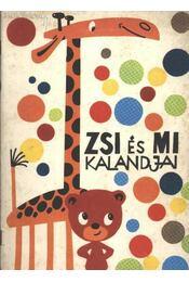 ZSI és MI kalandjai - Régikönyvek