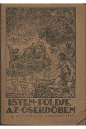 Isten földje az őserdőben - Régikönyvek