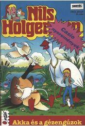 Nils Holgersson 45. szám 1992/2. február - Régikönyvek