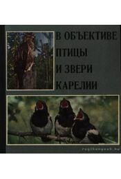 Objektívben Karjala madarai és vadai (В объективе птицы и звери Карелии) - Régikönyvek