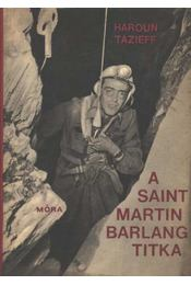 A Saint-Martin barlang titka - Régikönyvek