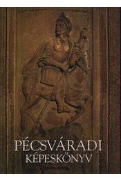 Pécsváradi képeskönyv - Régikönyvek