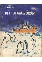 Déli jégmezőkön - Régikönyvek
