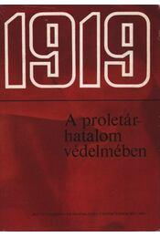 1919 - A proletárhatalom védelmében - Kovács Nándor, Kovács Jenő, Rotter József - Régikönyvek