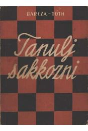 Tanulj sakkozni - Régikönyvek