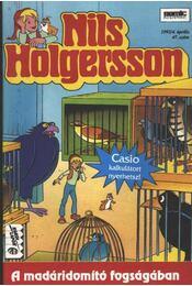 Nils Holgersson 47. szám 1992/4. április - Régikönyvek