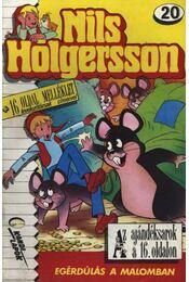 Nils Holgersson 20. - Régikönyvek