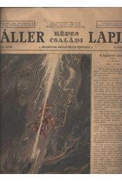 Áller Képes Családi Lapja II. évf. 45. szám - Régikönyvek