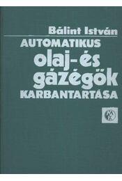 Automatikus olaj- és gázégök karbantartása - Régikönyvek