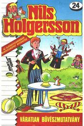 Nils Holgersson 24. - Régikönyvek