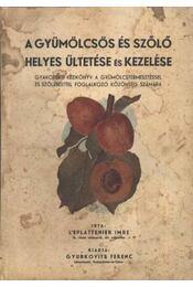 A gyümölcsös és szőlő helyes ültetése és kezelése - Régikönyvek