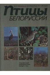 Belorusszia madarai (Птицы Белоруссии) - Régikönyvek