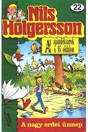 Nils Holgersson 22. - Régikönyvek