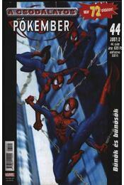 A csodálatos pókember 2007/2 44. szám - Régikönyvek