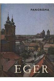 Eger - Régikönyvek
