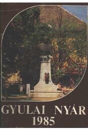 Gyulai nyár 1985 - Régikönyvek