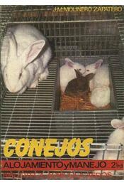 Conejos - Régikönyvek