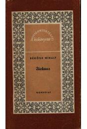 Dickens - Régikönyvek