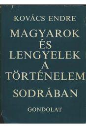 Magyarok és lengyelek a történelem sodrában - Régikönyvek