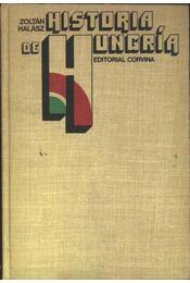 Historia de Hungría - Régikönyvek