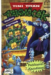 Tini Titán Teknőcök 1993/1. január 18. szám - Régikönyvek