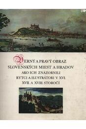 Verny a pravy obraz slovenskych miest a hradov, ako ich znázornili rytci a ilustrátori v XVI., XVII. a XVIII. storocí - Régikönyvek