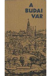 A Budai vár - Régikönyvek