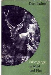Pirschgange in Wald und Flur (Vadak bescerkészése erdőn s mezőn) - Régikönyvek