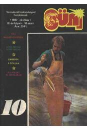 Süni 10. 1987 október - Régikönyvek