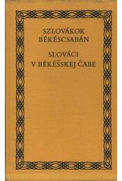 Szlovákok Békéscsabán - Régikönyvek