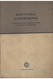 Könyvviteli alapismeretek - Régikönyvek