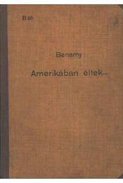 Amerikában éltek - Régikönyvek