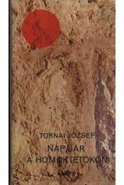 Nap jár a homoktetőkön - Régikönyvek