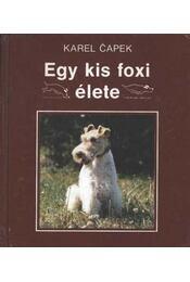 Egy kis foxi élete - Régikönyvek