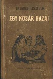 Egy kosár hazai - Régikönyvek