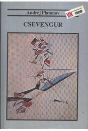 Csevengur - Régikönyvek