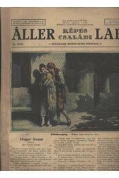 Áller Képes Családi Lapja IV. évf. 26. szám - Régikönyvek