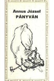 Pányván - Régikönyvek