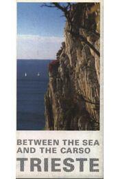 Trieste (térkép) - Régikönyvek