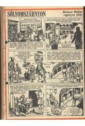 Sólyomszárnyon (Füles 1987. 34-68. szám 1- 26. rész) - Régikönyvek