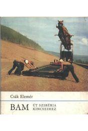 Bam - Régikönyvek