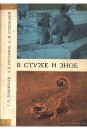 Fagyban és hőségben (В стуже и зное) - Régikönyvek