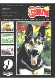 Süni 1989. V. évf. 9. szám - Régikönyvek