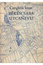 Békéscsaba utcanevei - Régikönyvek
