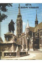 Séta a Budai várban - Régikönyvek