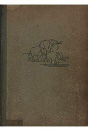 Tierparadies Afrika - Régikönyvek