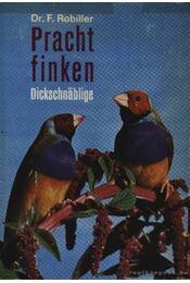 Pracht finken - Régikönyvek