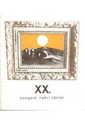 XX. szegedi nyári tárlat - Régikönyvek