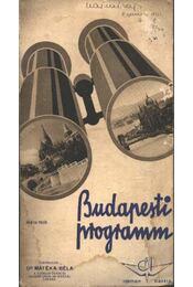 Budapesti program - Régikönyvek